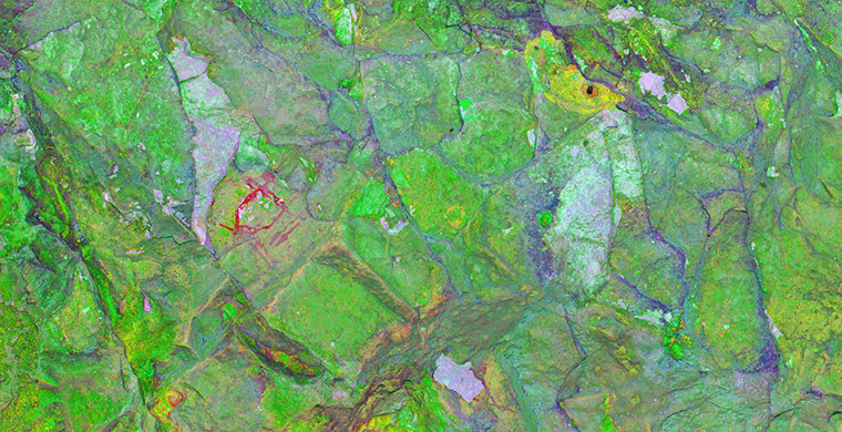 Gigapixel image of the right area of Cova Alta del Lledoner, false color.